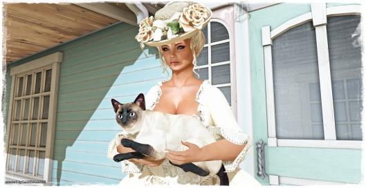 Cat lover 2