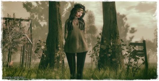 Hippie 3