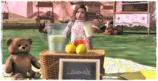 lemons-bear-and-picnic-time-3
