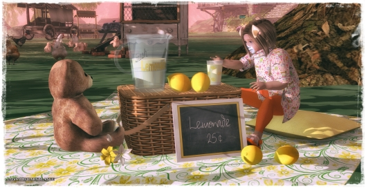 lemons-bear-and-picnic-time-4
